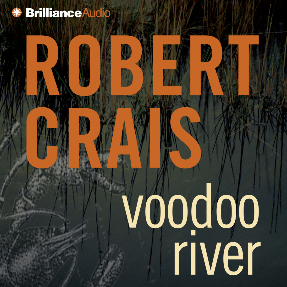 Printable Voodoo River Audiobook Cover Art