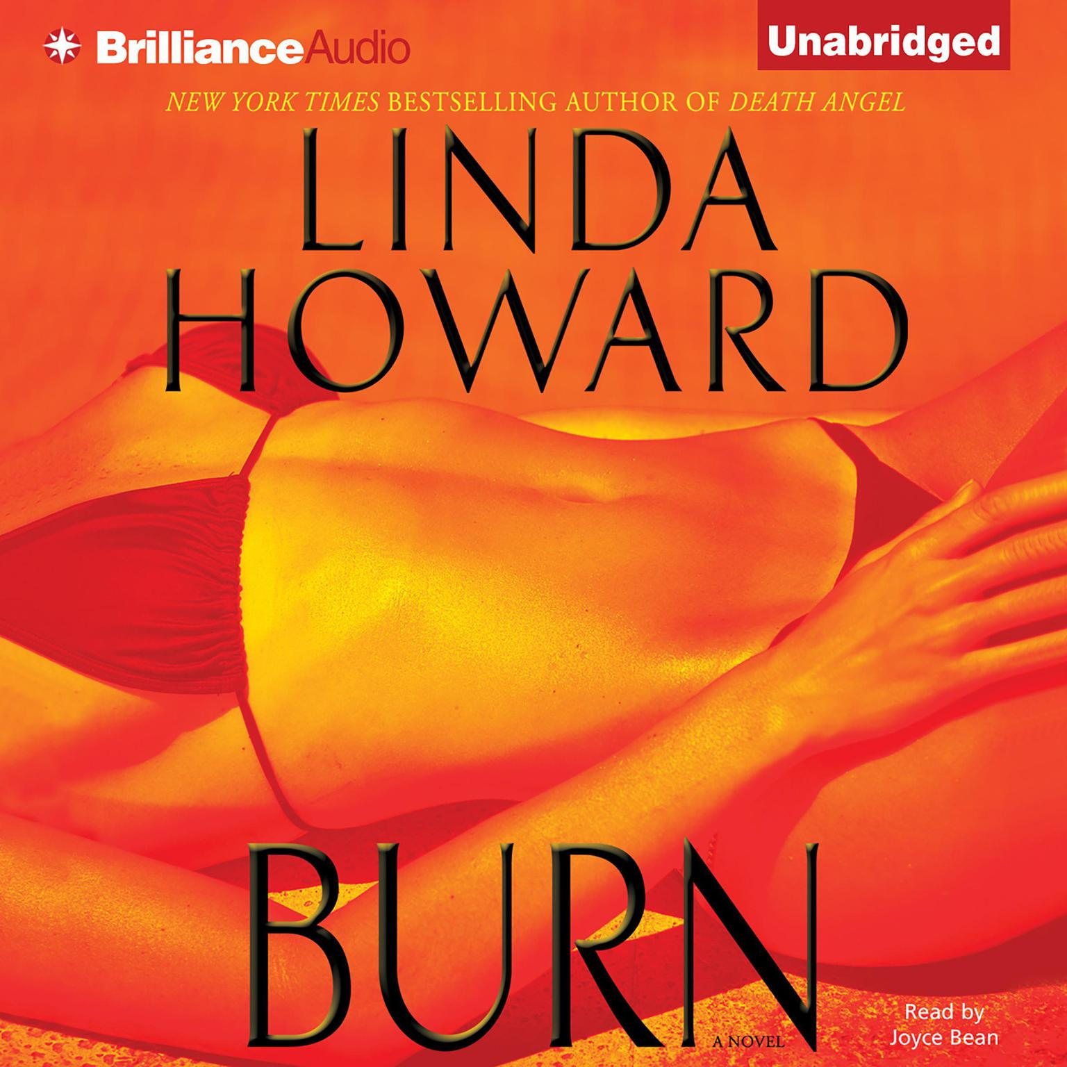 Printable Burn Audiobook Cover Art