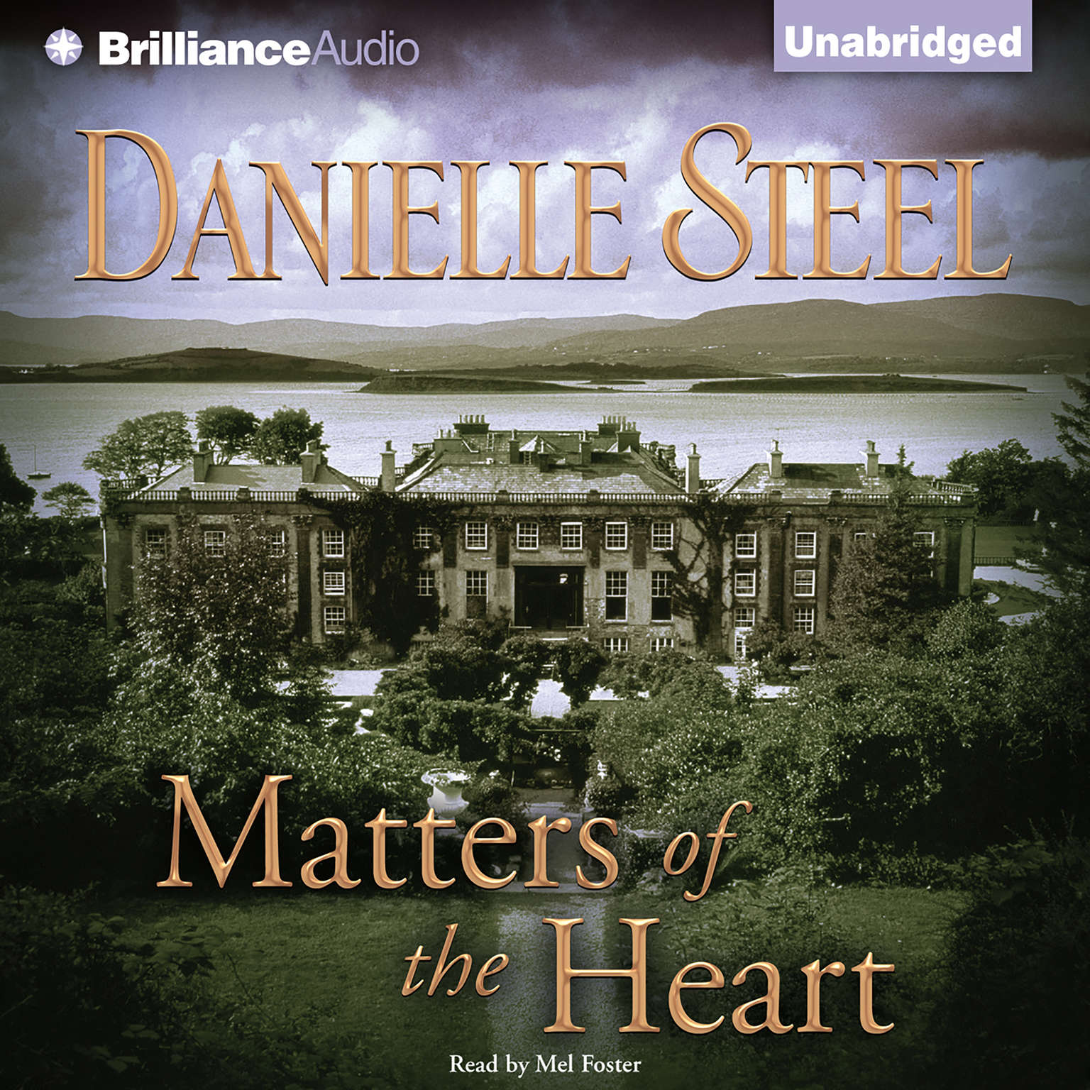 Printable Matters of the Heart Audiobook Cover Art