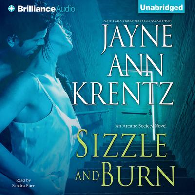 Sizzle and Burn Audiobook, by