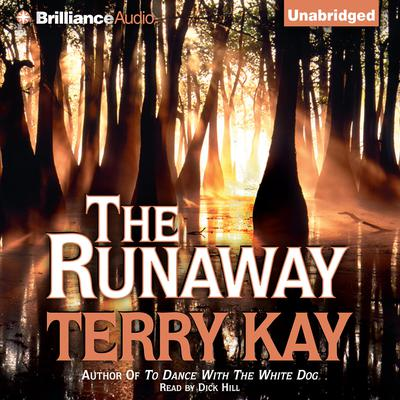 The Runaway Audiobook, by Terry Kay