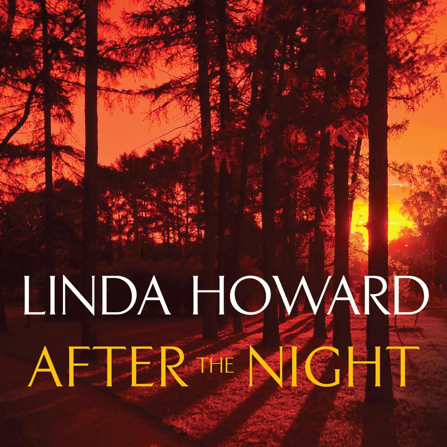Printable After the Night Audiobook Cover Art