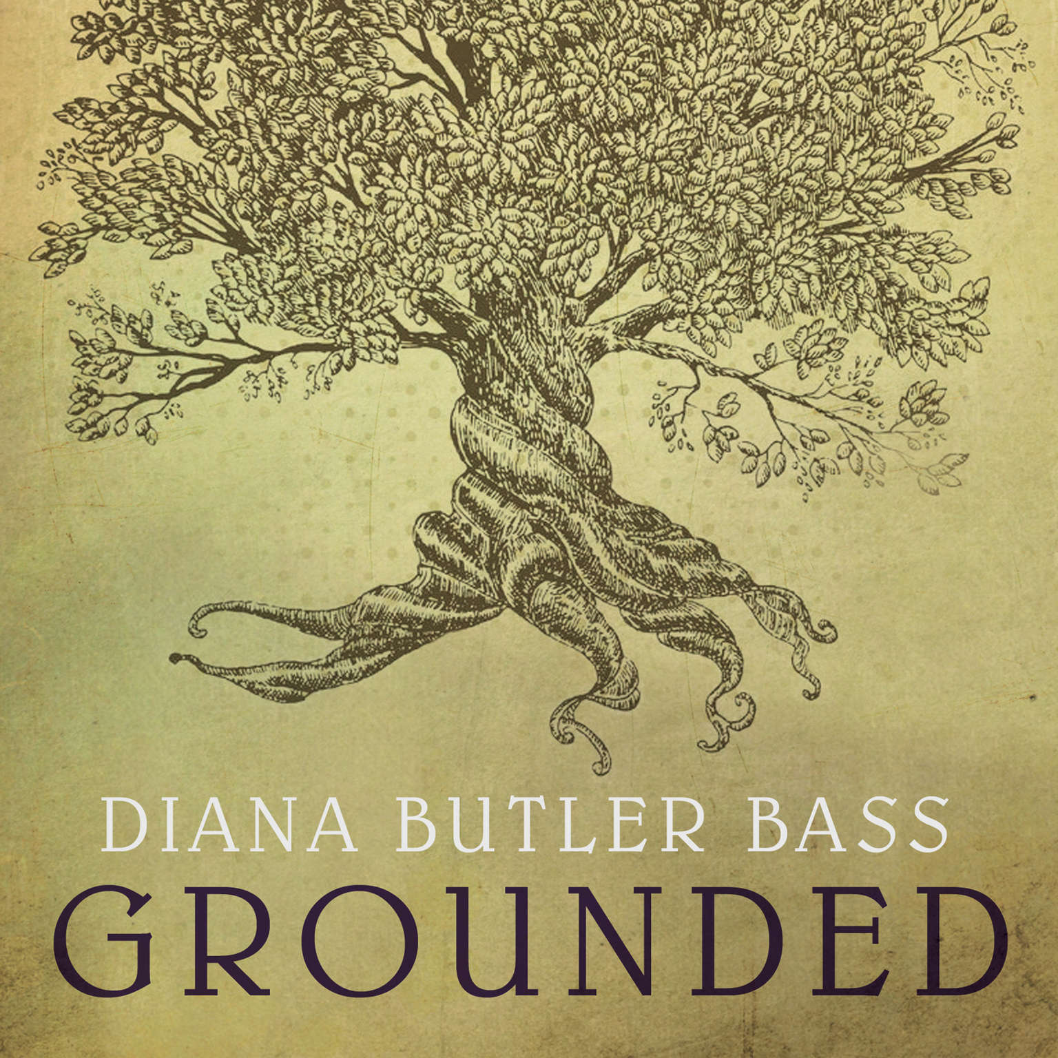 Grounded: Finding God in the World-A Spiritual Revolution Audiobook, by Diana Butler Bass