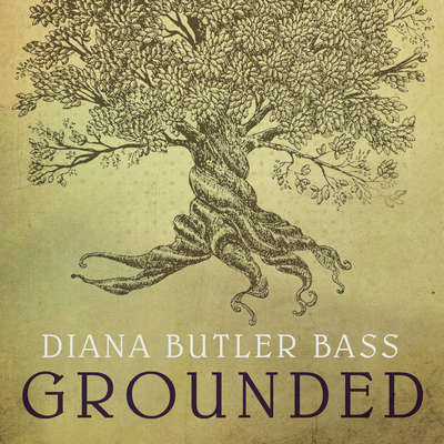 Grounded: Finding God in the World-A Spiritual Revolution Audiobook, by