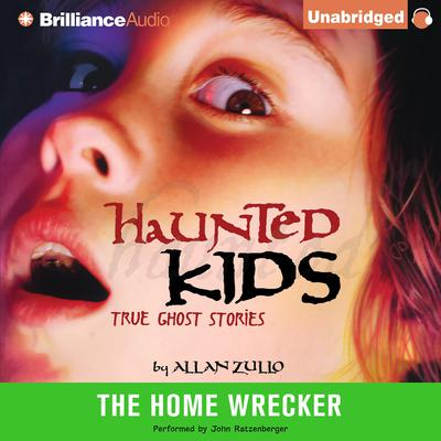 The Home Wrecker Audiobook, by Allan Zullo