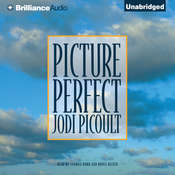 Picture Perfect, by Jodi Picoult