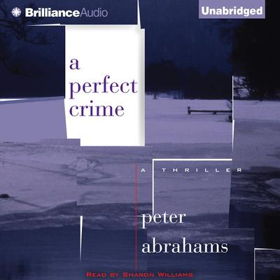 A Perfect Crime Audiobook, by Peter Abrahams