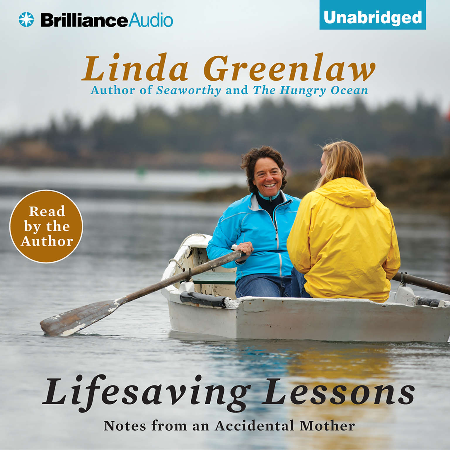 Printable Lifesaving Lessons: Notes from an Accidental Mother Audiobook Cover Art