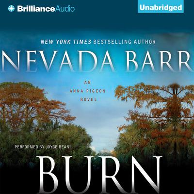 Burn Audiobook, by Nevada Barr