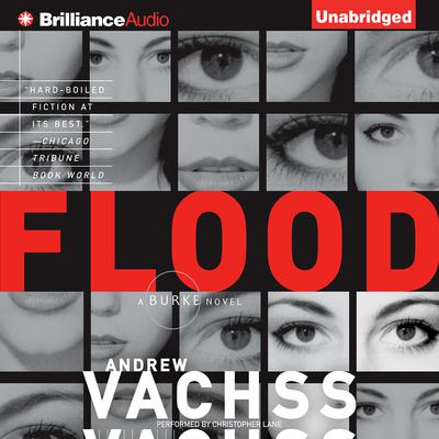 Flood: A Novel Audiobook, by Andrew Vachss