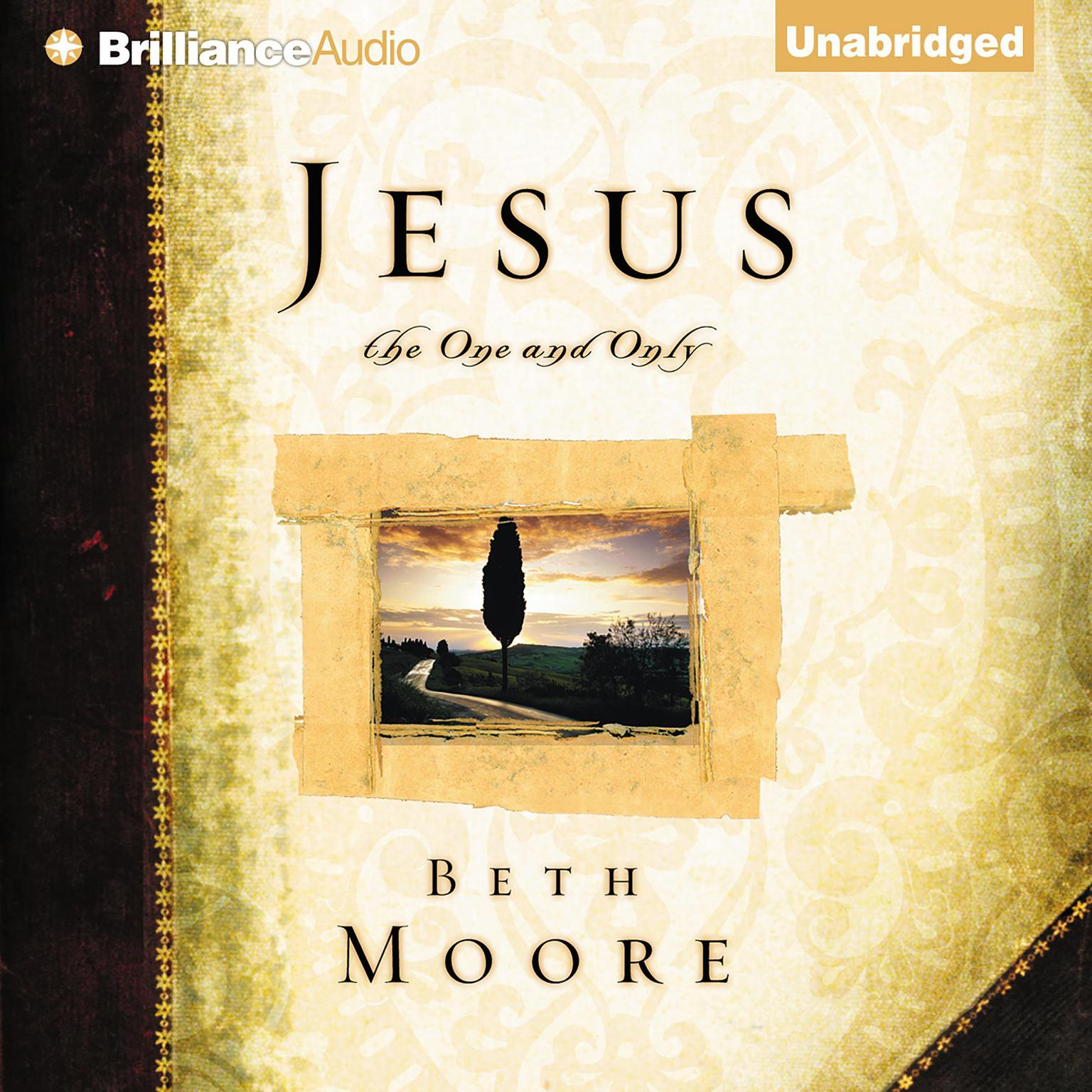 Printable Jesus, the One and Only Audiobook Cover Art