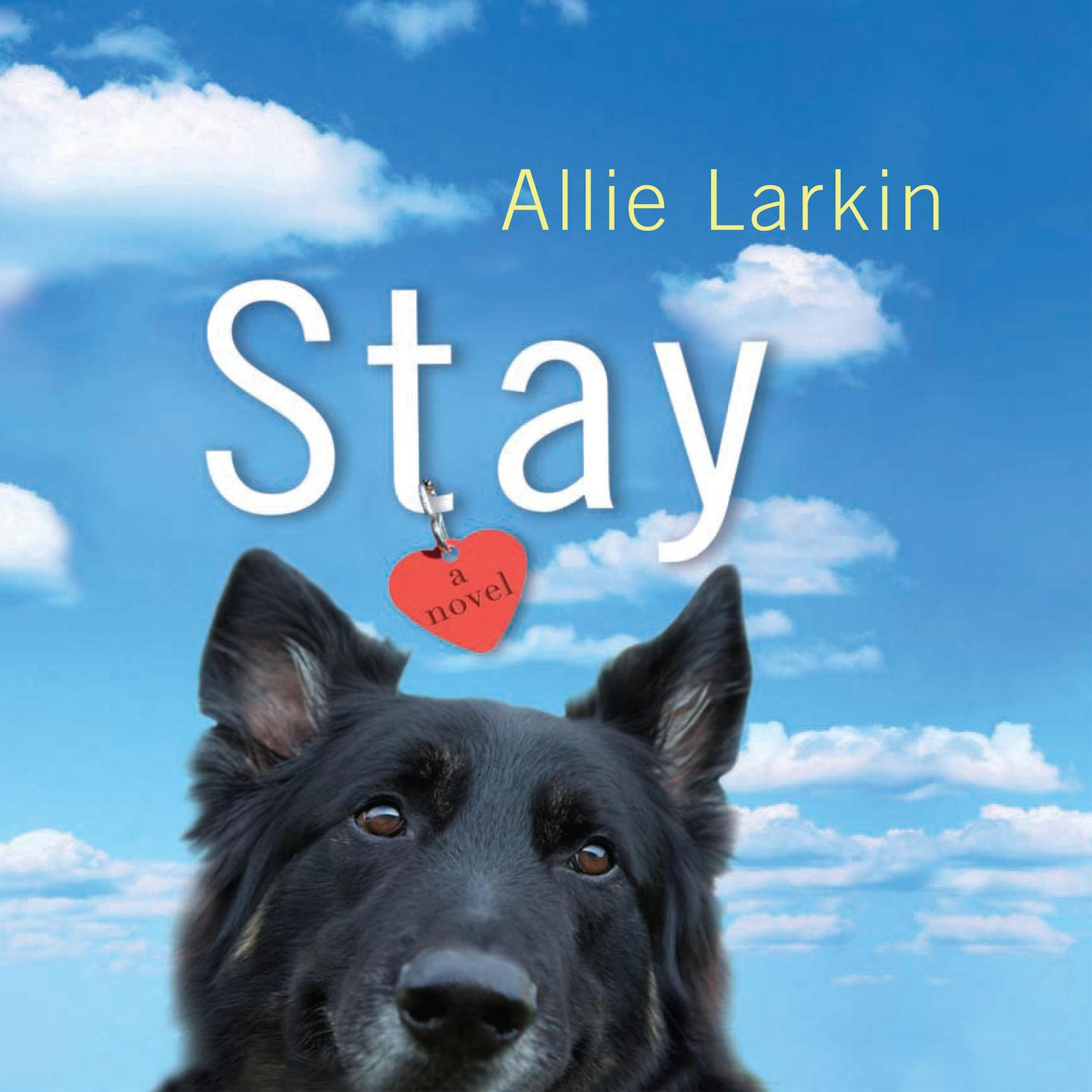 Printable Stay: A Novel Audiobook Cover Art