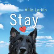 Stay: A Novel Audiobook, by Allie Larkin