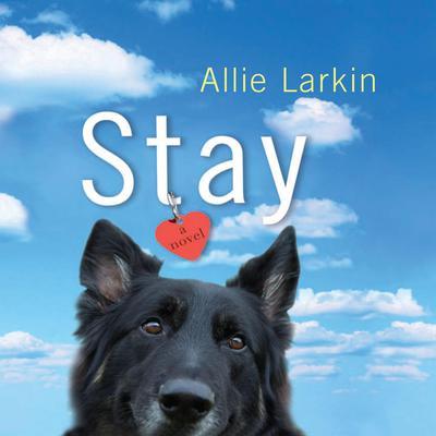 Stay: A Novel Audiobook, by Allie Larkin