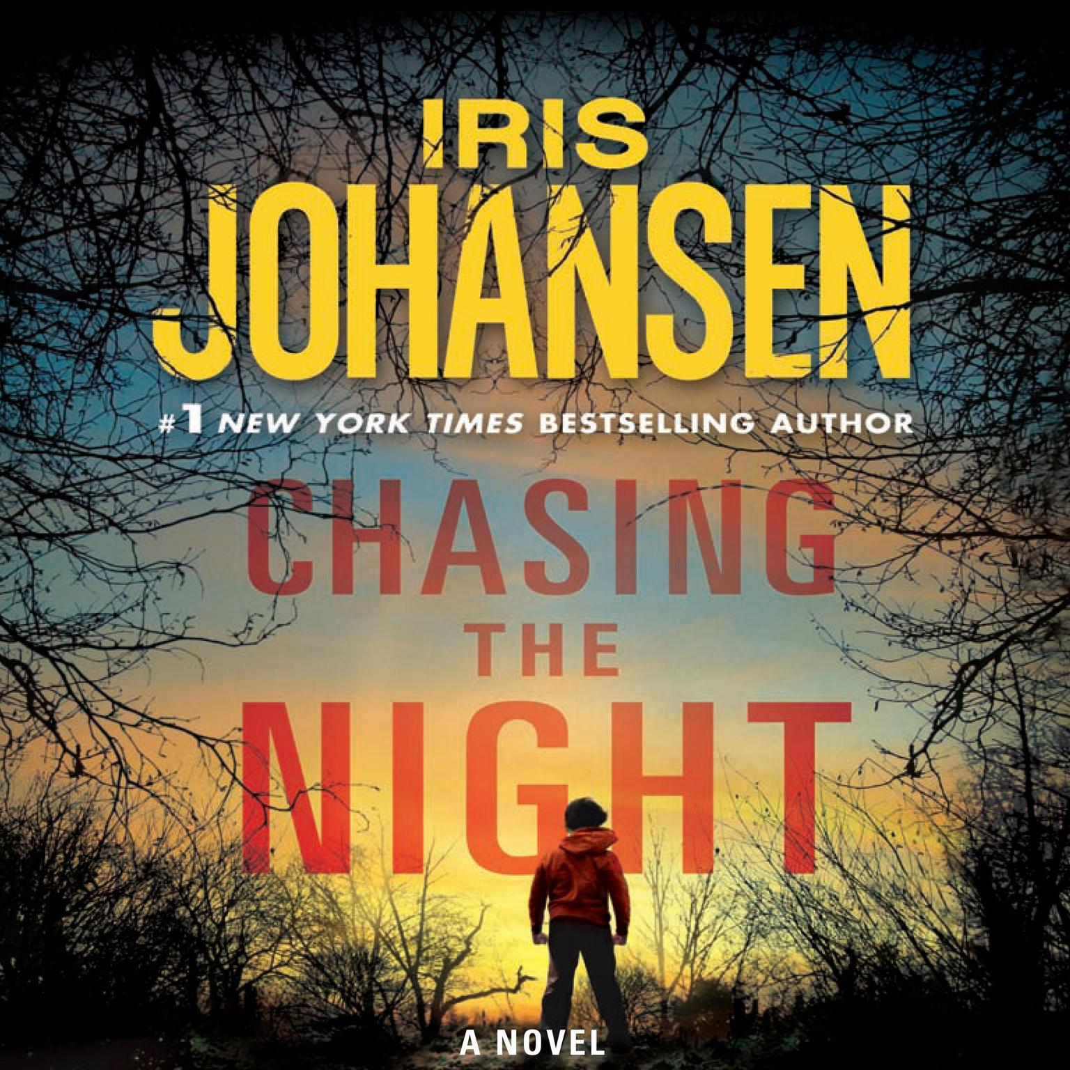 Printable Chasing the Night Audiobook Cover Art