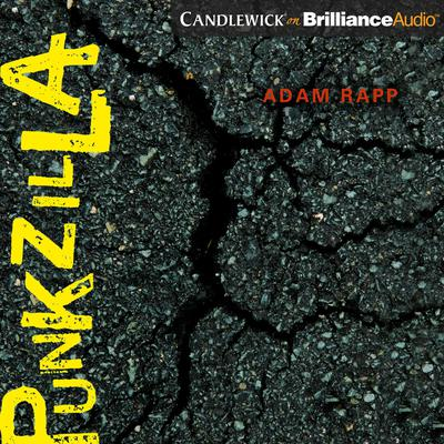 Punkzilla Audiobook, by Adam Rapp