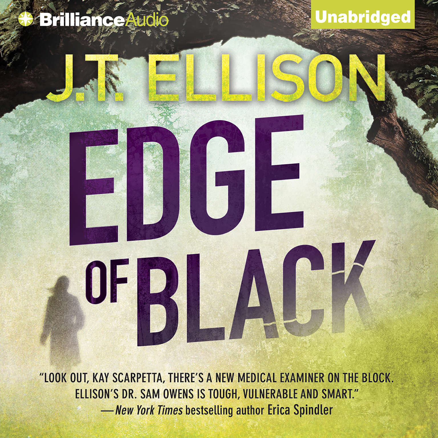 Printable Edge of Black Audiobook Cover Art