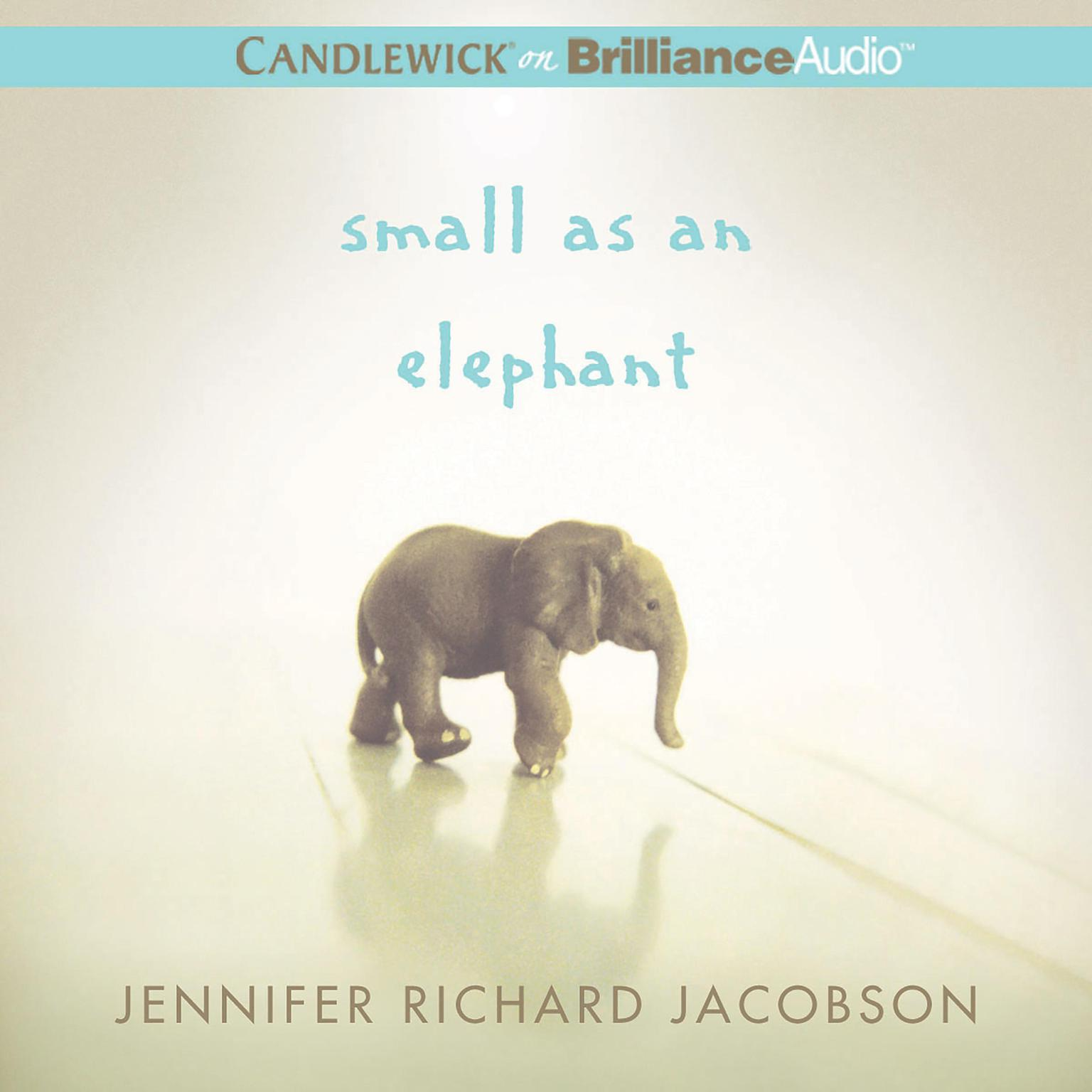 Printable Small as an Elephant Audiobook Cover Art