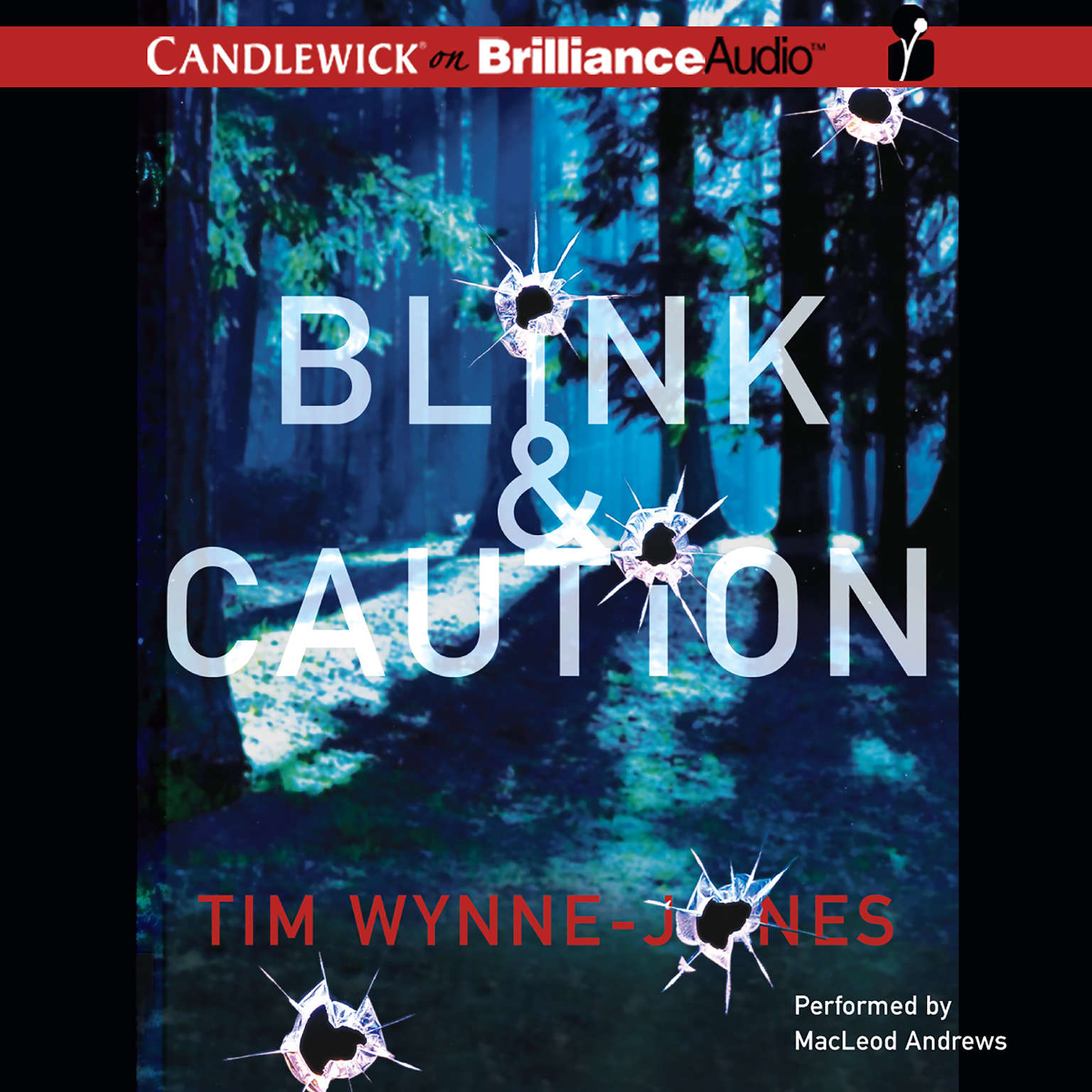 Printable Blink & Caution Audiobook Cover Art