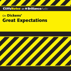 Great Expectations Audiobook, by Debra Bailey
