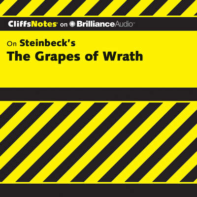 The Grapes of Wrath Audiobook, by Kelly McGrath Vlcek