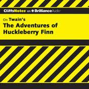 The Adventures of Huckleberry Finn Audiobook, by Robert Bruce