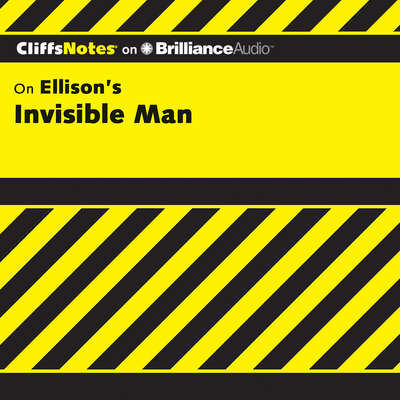Invisible Man Audiobook, by Durthy A. Washington
