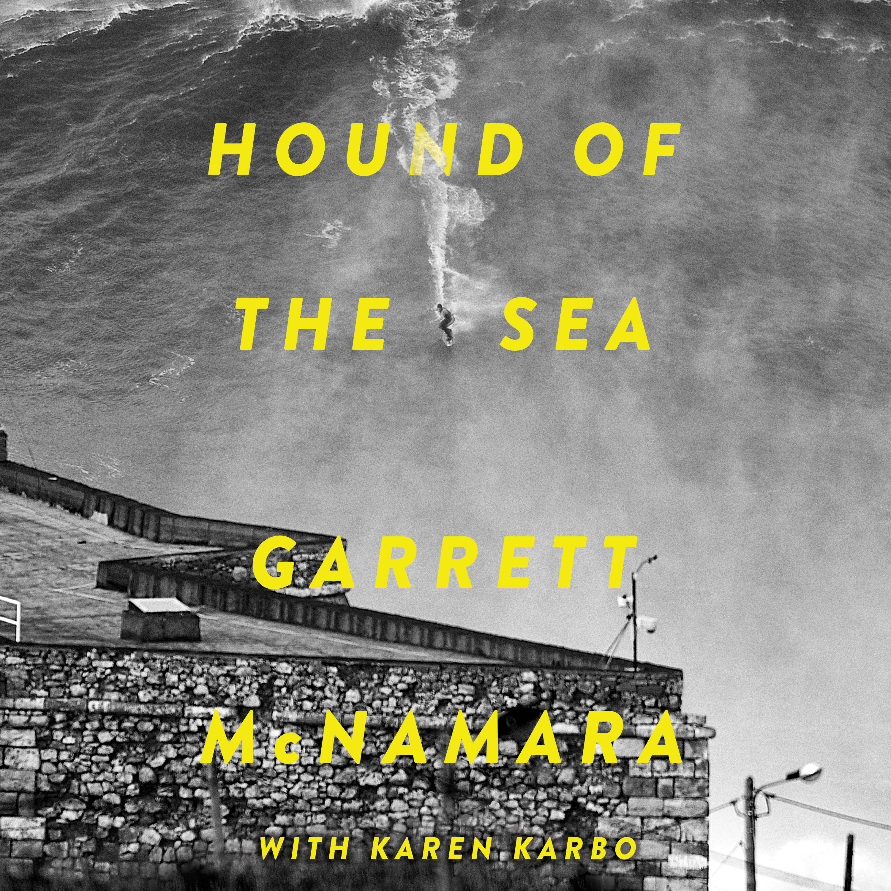 Printable Hound of the Sea: Wild Man. Wild Waves. Wild Wisdom. Audiobook Cover Art