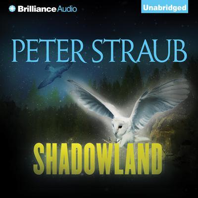 Shadowland Audiobook, by Peter Straub