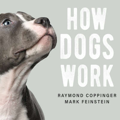 How Dogs Work Audiobook, by Raymond Coppinger