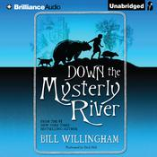 Down the Mysterly River Audiobook, by Bill Willingham