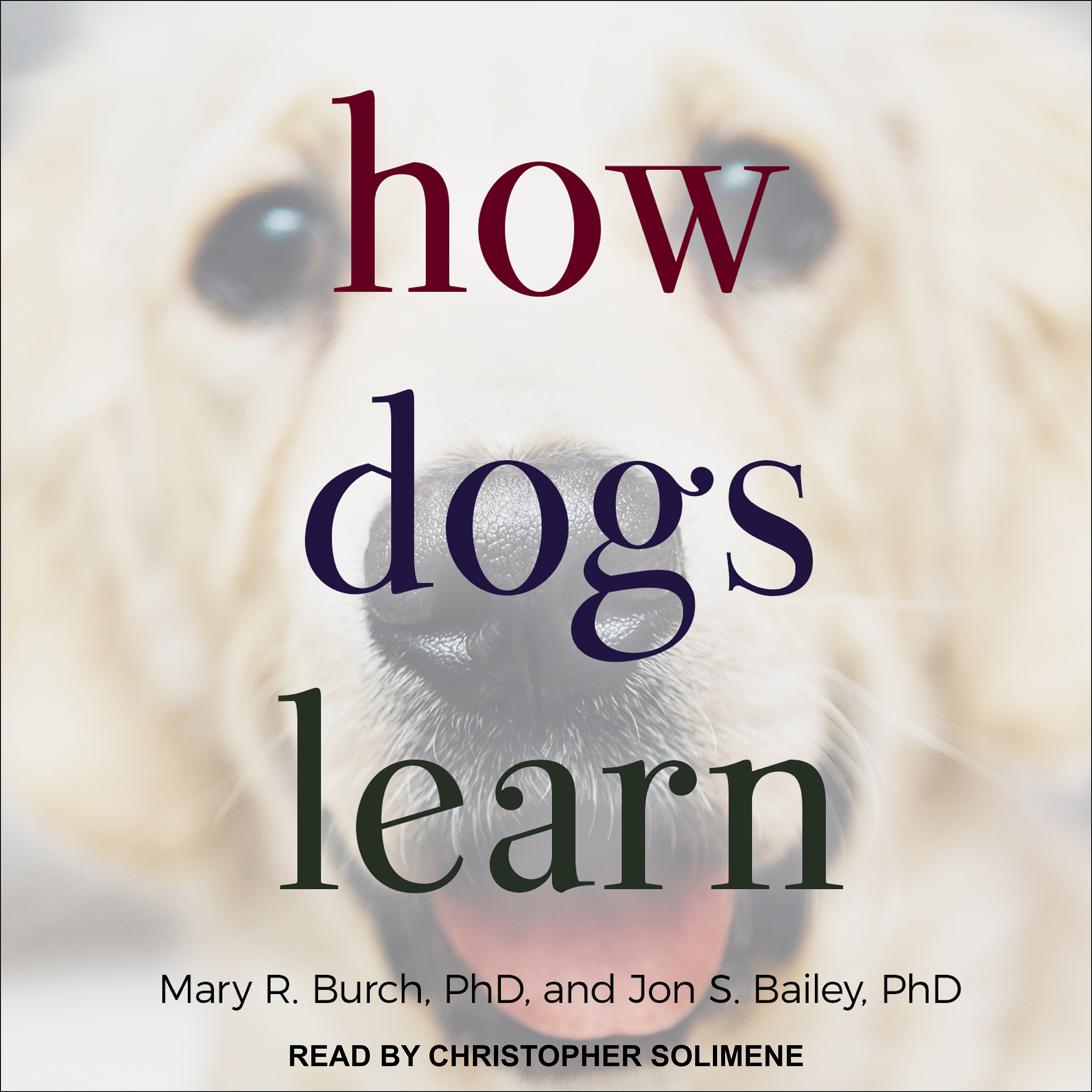 Printable How Dogs Learn Audiobook Cover Art