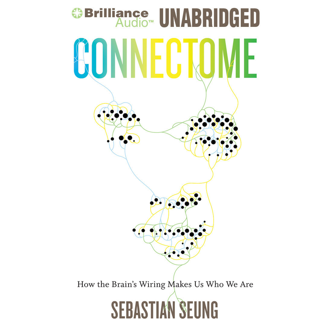 Printable Connectome: How the Brain's Wiring Makes Us Who We Are Audiobook Cover Art