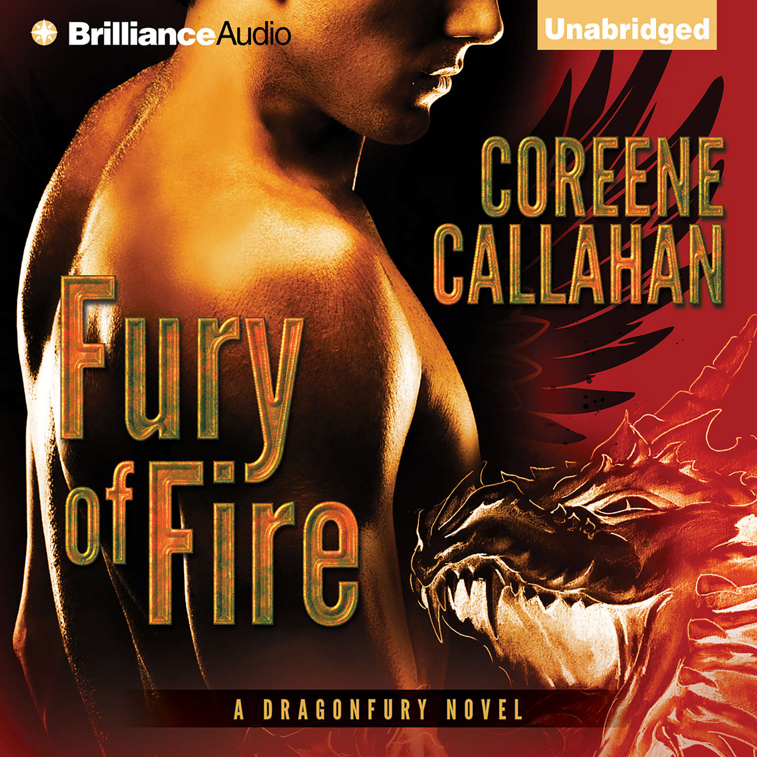 Printable Fury of Fire Audiobook Cover Art