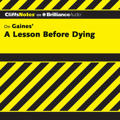 A Lesson Before Dying Audiobook, by Durthy A. Washington