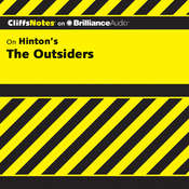 The Outsiders Audiobook, by Janet Clark