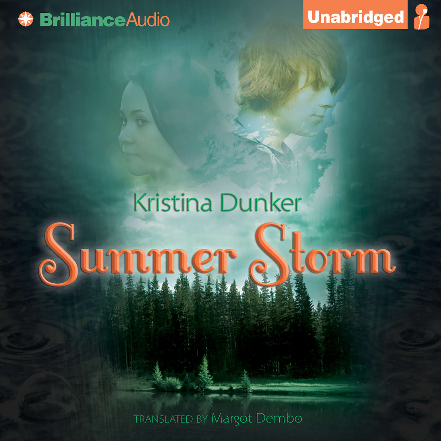 Printable Summer Storm Audiobook Cover Art
