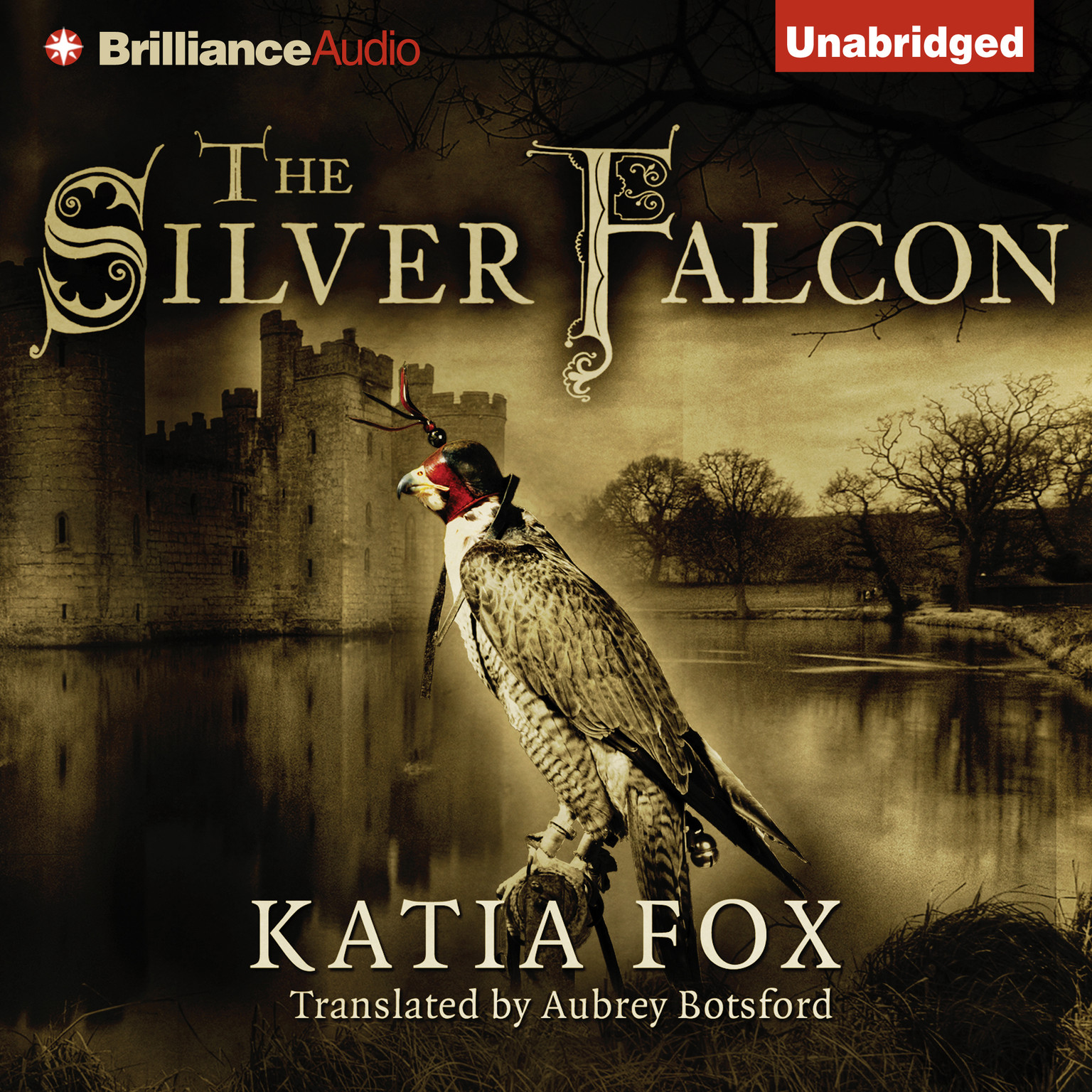 Printable The Silver Falcon Audiobook Cover Art