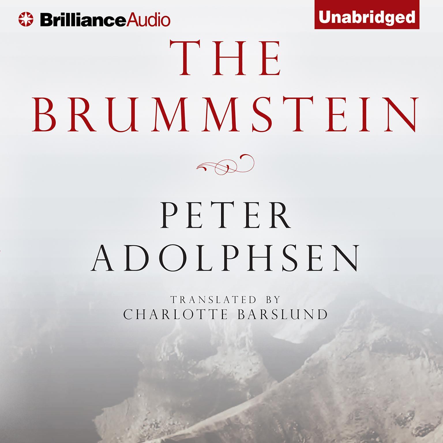 Printable The Brummstein Audiobook Cover Art