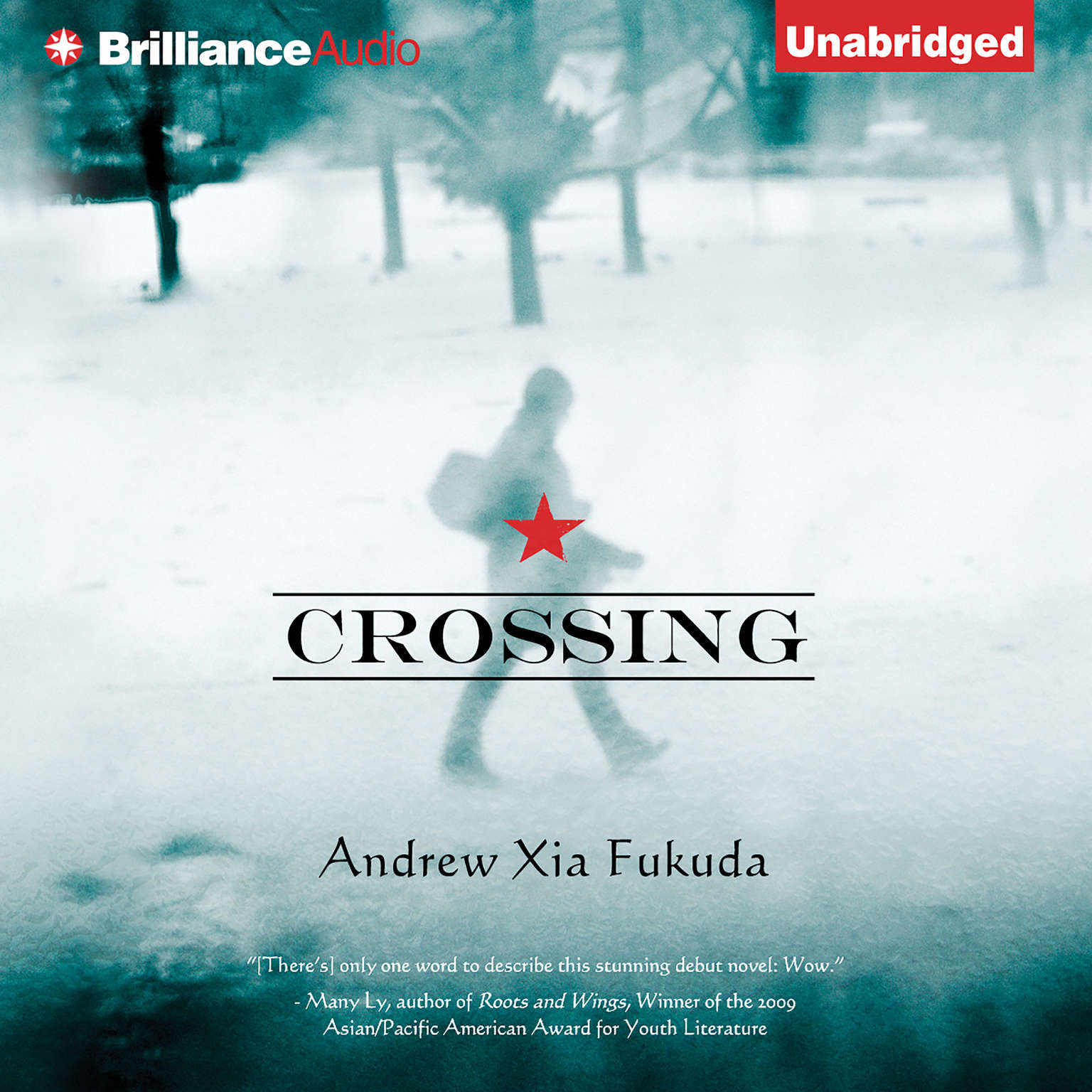 Printable Crossing Audiobook Cover Art