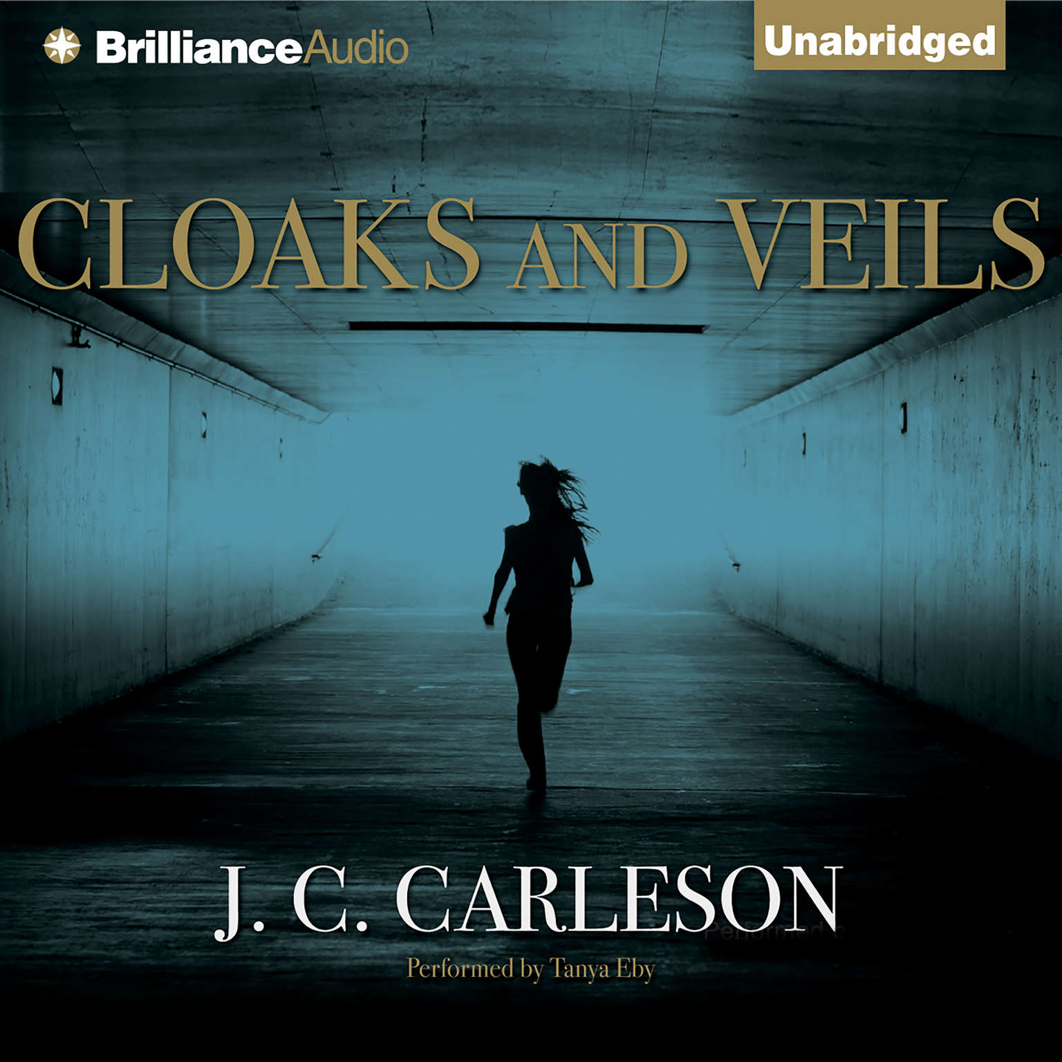 Printable Cloaks and Veils Audiobook Cover Art