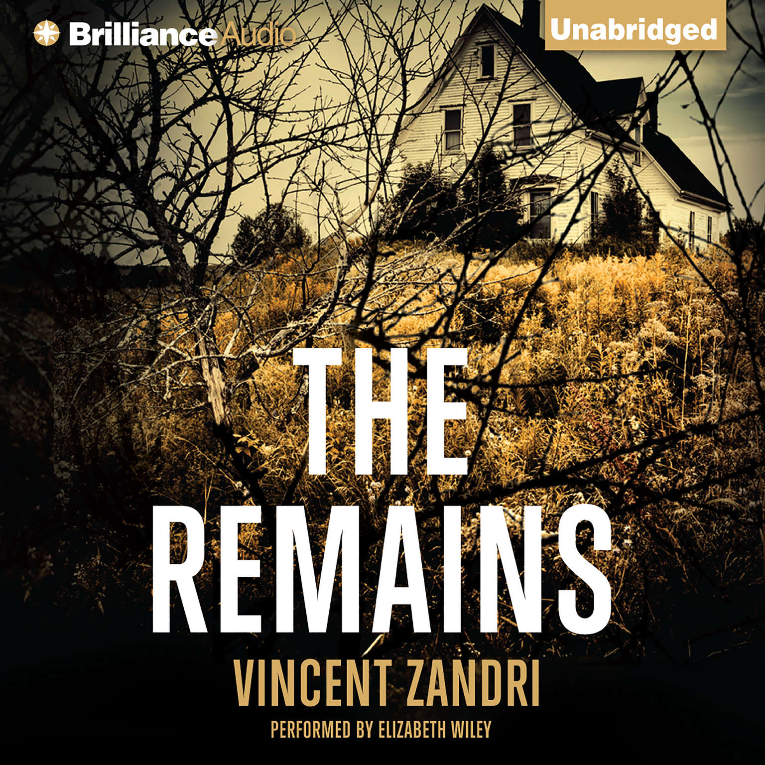 Printable The Remains Audiobook Cover Art