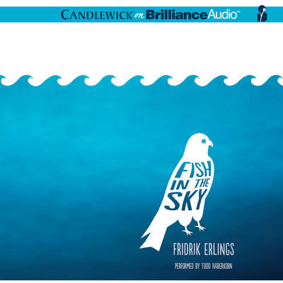 Fish in the Sky Audiobook, by Fridrik Erlings