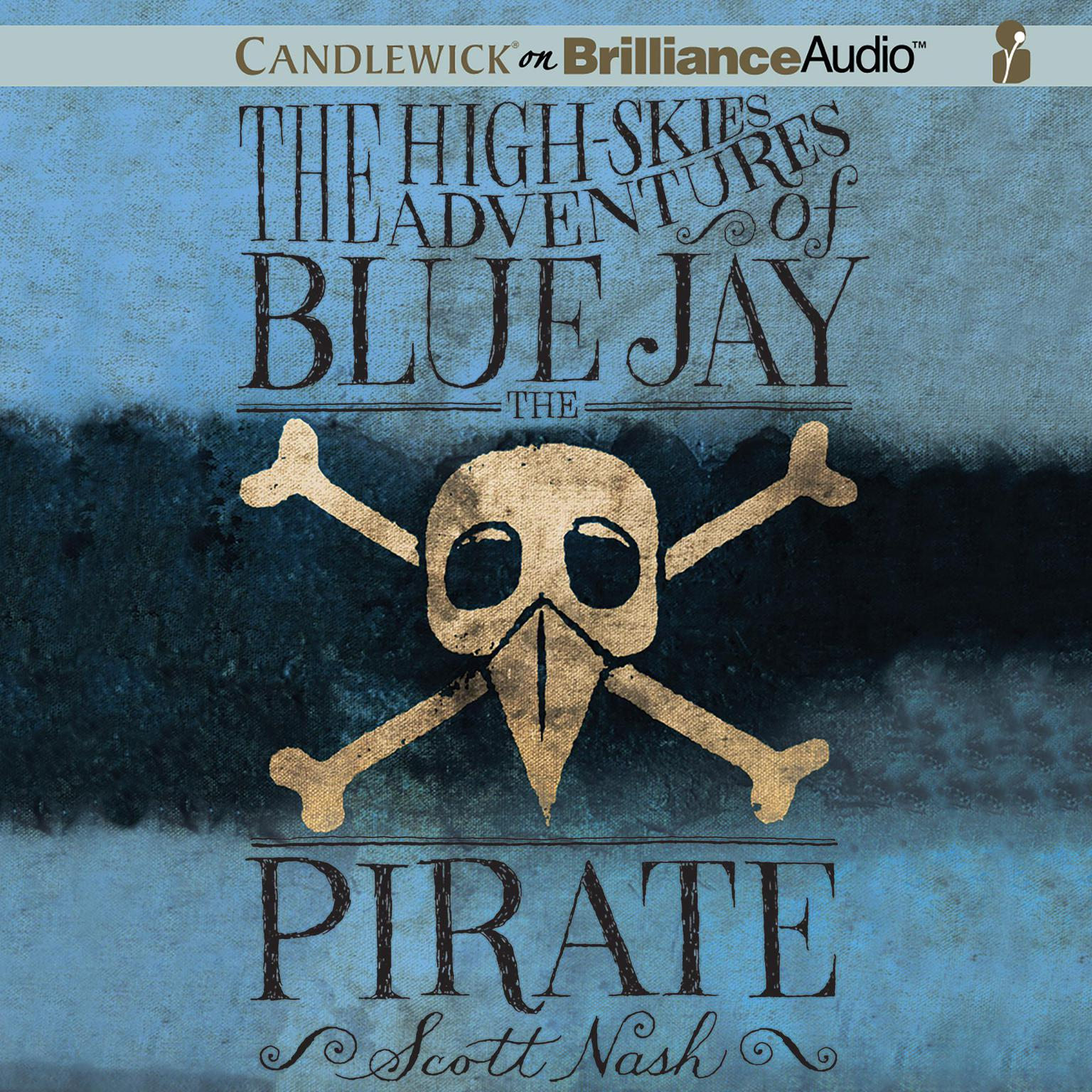 Printable The High-Skies Adventures of Blue Jay the Pirate Audiobook Cover Art