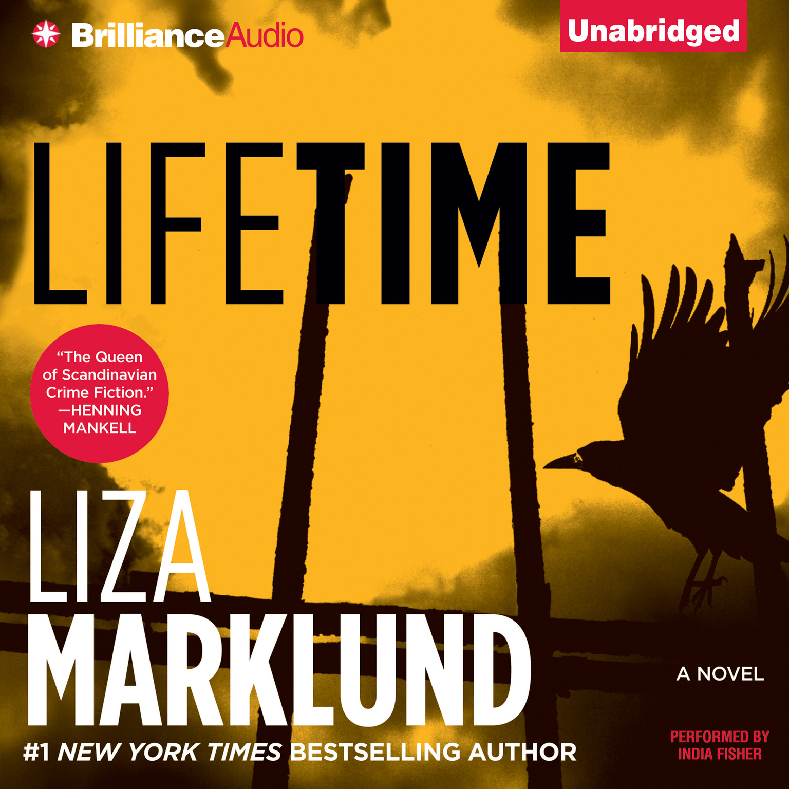 Printable Lifetime Audiobook Cover Art