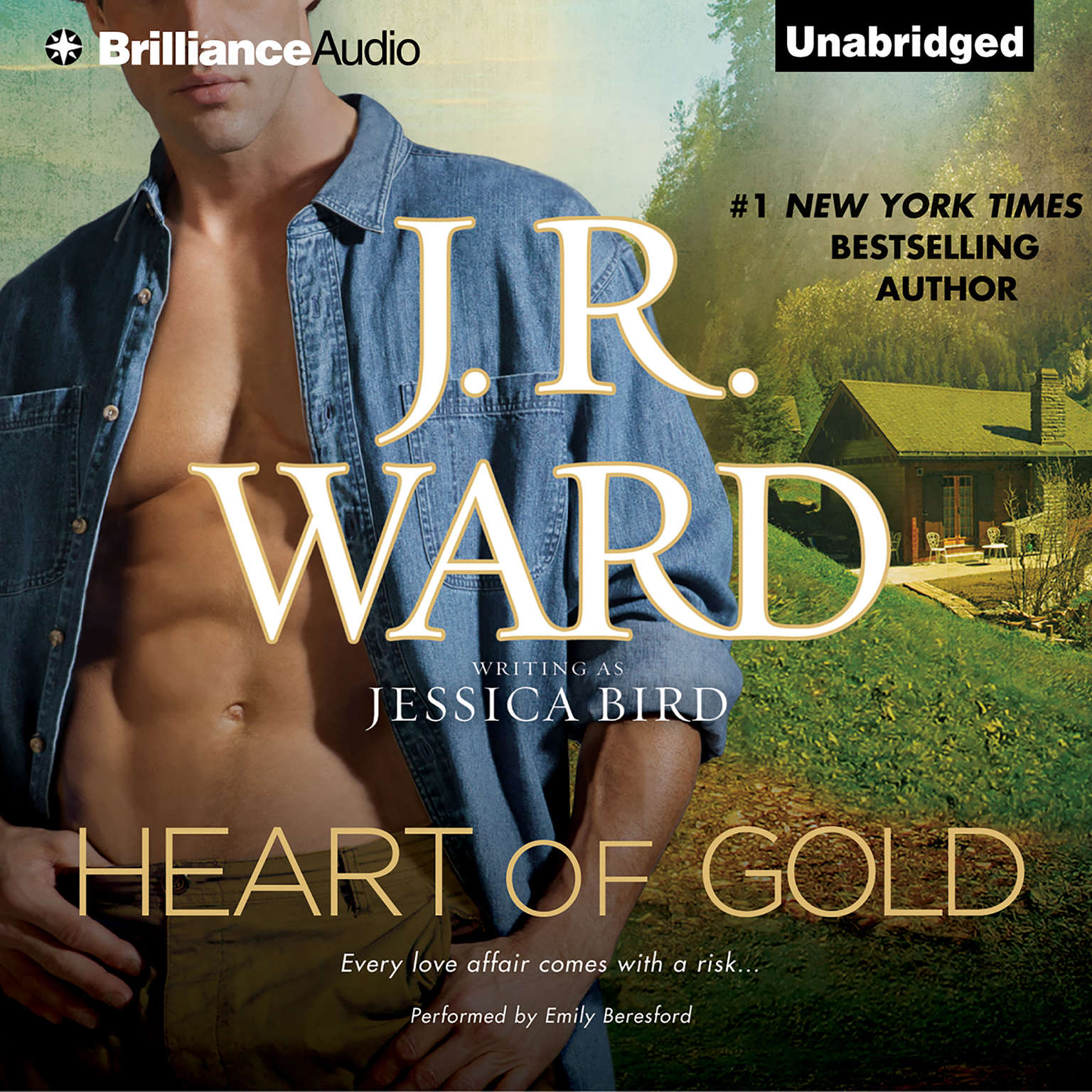 Printable Heart of Gold Audiobook Cover Art