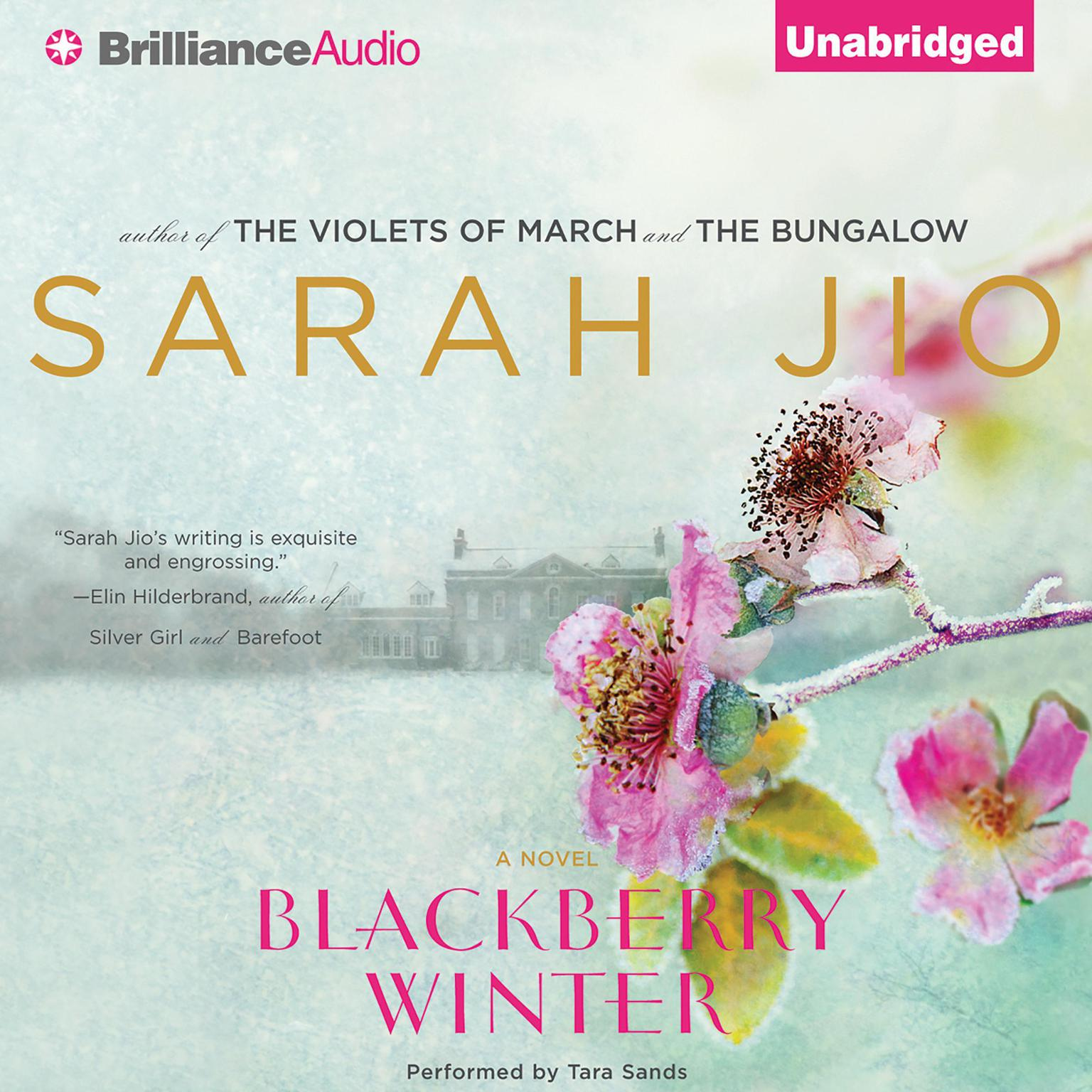 Printable Blackberry Winter: A Novel Audiobook Cover Art