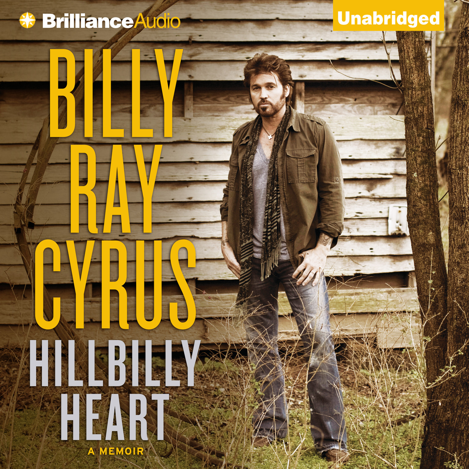 Printable Hillbilly Heart Audiobook Cover Art