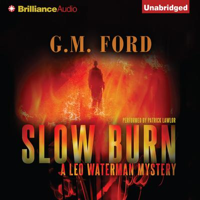 Slow Burn Audiobook, by G. M. Ford