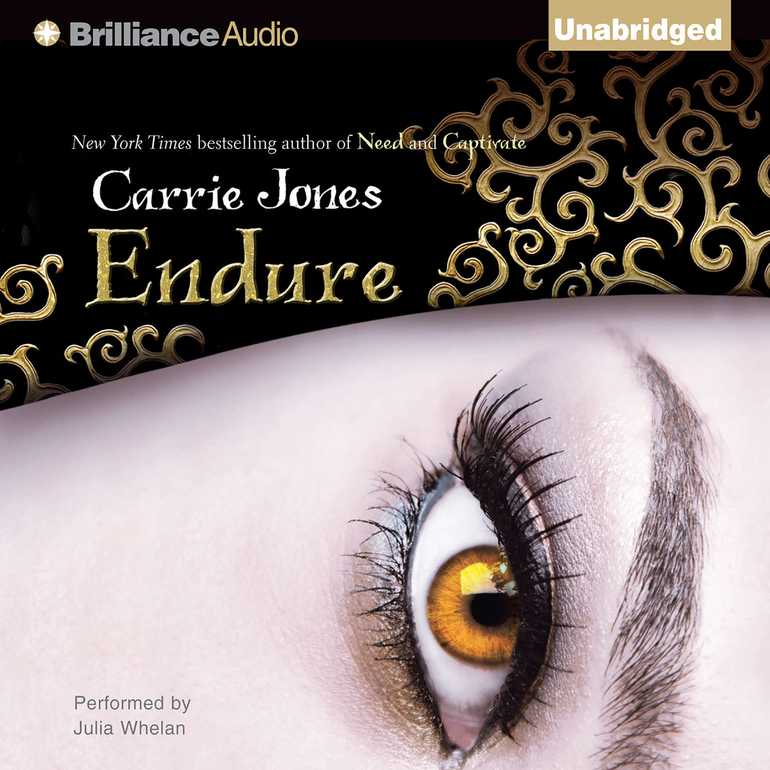 Printable Endure Audiobook Cover Art